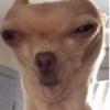 AwkwardJames's avatar