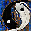 awp10226's avatar