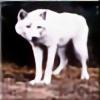 awrah's avatar