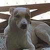 Aximbin's avatar