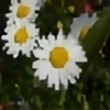 ayato05's avatar