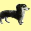 ayumminu's avatar