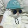 ayyylien's avatar