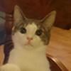 AzocA's avatar
