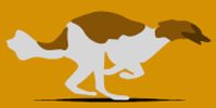Azorean-Hound-Club's avatar