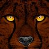 Aztec-Galaxy's avatar