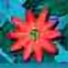 azulbliss's avatar