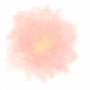 b0ba-petal's avatar