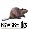 B3W3Rtj13's avatar