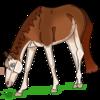 Babypigtiny's avatar