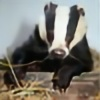 badger-babe's avatar