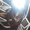 Balachandra48's avatar