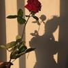 Banlov's avatar