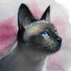 BaoooAnh's avatar