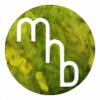 Barambula's avatar