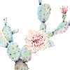 barrelraceradduc's avatar
