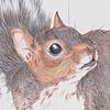 Baujauging's avatar