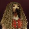 BavarianR's avatar