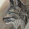 Bavask's avatar