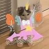 BawbyStwabewwy's avatar