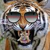 BboySupaFlava's avatar