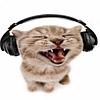 beabygirl's avatar