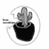 bean-succulents's avatar