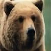 Bear-21's avatar