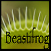 beastifrog's avatar