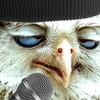 bebob4999's avatar
