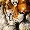 bedalart's avatar