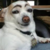 Beffery's avatar