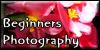 BeginnersPhotography's avatar