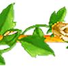 beigerose2plz's avatar