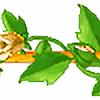 beigerose5plz's avatar