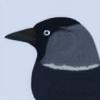 BelayaMol's avatar