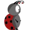 belgian-panda's avatar