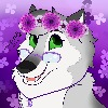 BellaLunaWolff's avatar