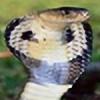 Bellatrix-Discipula's avatar