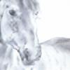 BELLAVISTA2's avatar