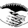 BellicoseButterfly's avatar