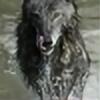 benbomber's avatar