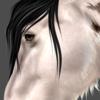 Bendagi's avatar