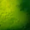 BenDrill's avatar