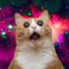 berkayy90's avatar