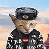 bestgoogas's avatar