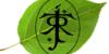 BeyondLothlorien's avatar