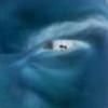 bielleza's avatar