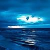 bill1955's avatar