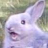 Birbais's avatar